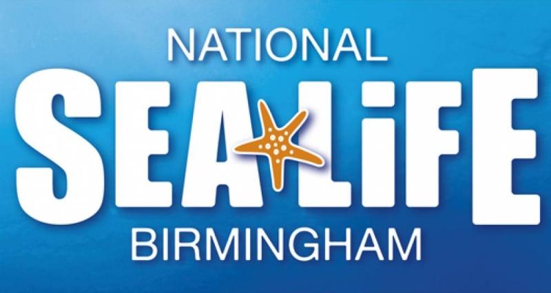 Photo of National SEA LIFE Centre Birmingham 2018 Review