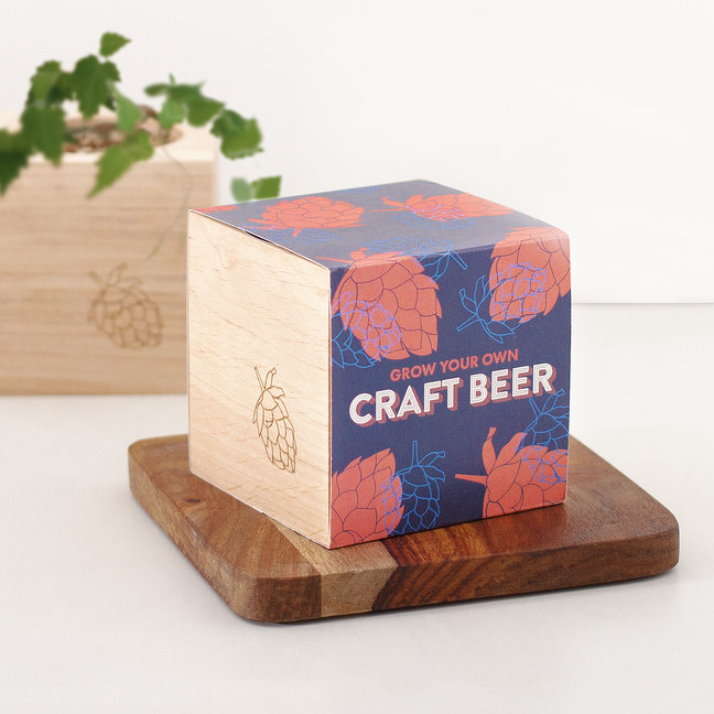 Photo of Firebox Grow Your Own Craft Beer Kit Review