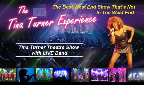 Photo of The Tina Turner Experience at The Hawth Crawley Review