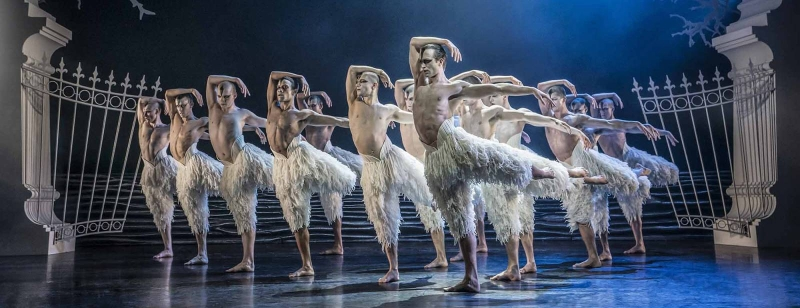 Photo of Matthew Bourne's Swan Lake at The Lowry Manchester Review