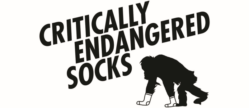 Photo of Critically Endangered Socks Review