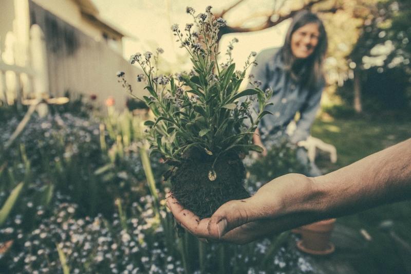 Photo of Top Tips For Beginner Gardeners