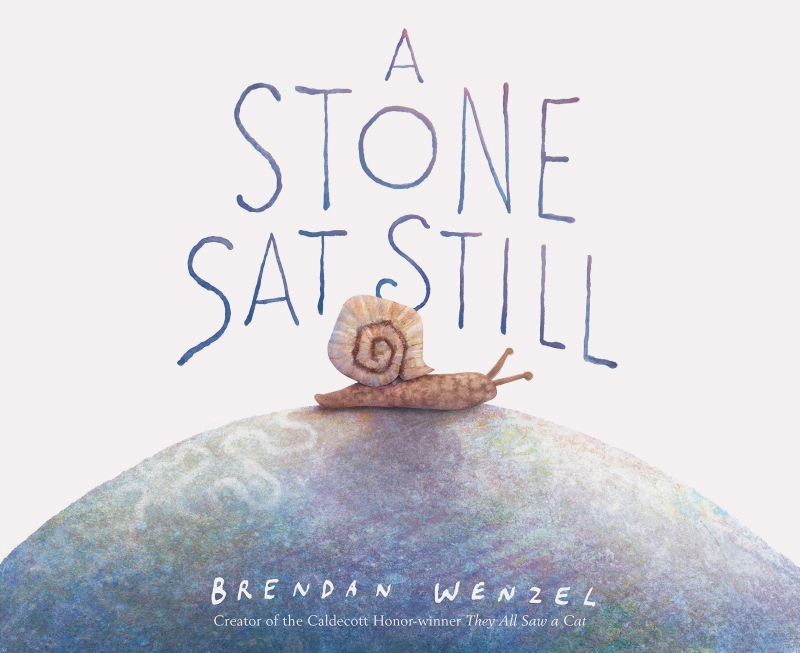 Photo of A Stone Sat Still by Brendan Wenzel Review