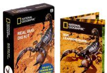 Bug Dig Kit
