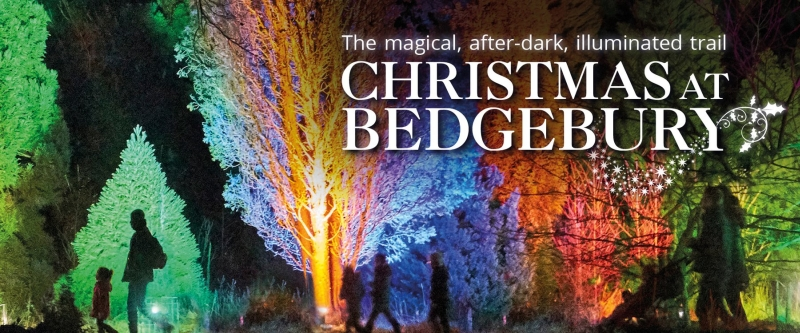 Photo of Christmas at Bedgebury Review