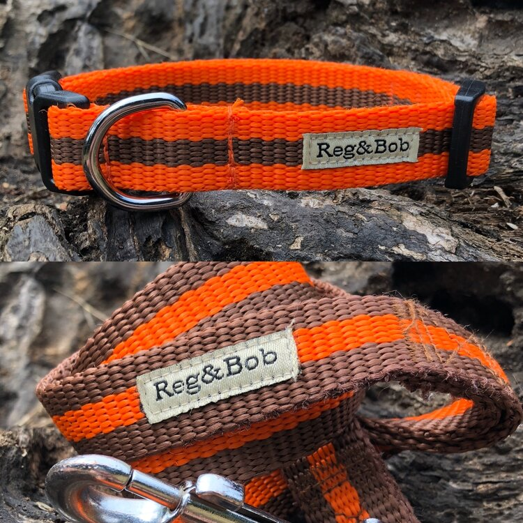 Photo of Reg&Bob Collar and Lead Review