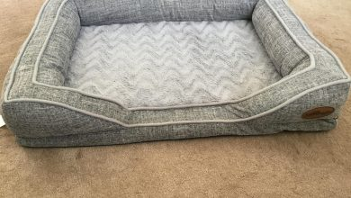 Photo of Silentnight Orthopaedic Dog Bed Review