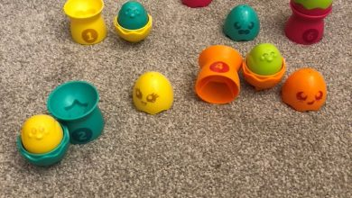 Photo of Tomy Toomies Hide & Squeak Egg Stackers Review