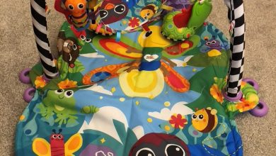 Photo of Lamaze Freddie The Firefly 3-in-1 Gym Review
