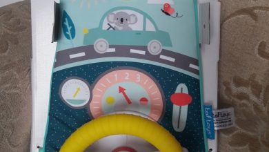 Photo of Taf Toys Easier Drive Koala Car Wheel Toy Review