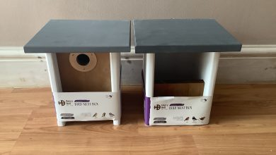 Photo of Henry Bell Bird Boxes Review