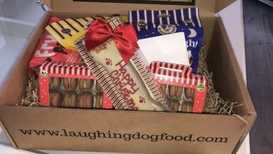 Photo of Laughing Dog Christmas Hamper For Dogs Review