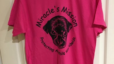 Photo of Miracles Mission T Shirt Review
