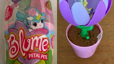 Photo of Blume Petal Pets Series 1 Review