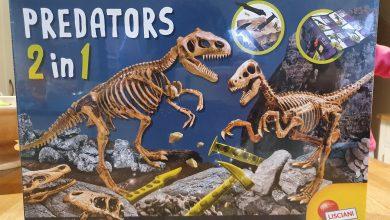 Photo of Predators 2 in 1 Review