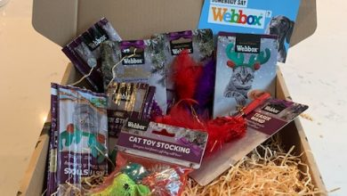 Photo of WEBBOX Christmas Cat Hamper Review