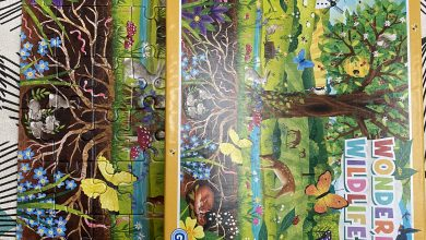 Photo of Gibson Games Wonderful Wildlife Puzzle Review